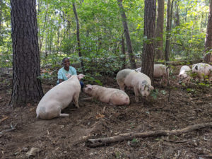 Cover photo for Farm Visit Snapshots: Off Grid in Color