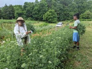 Cover photo for Farm Visit Snapshots: Perry-Winkle Farm to Market!